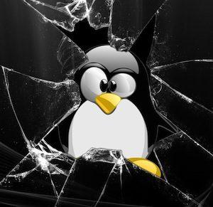 آسیب پذیری DOS در کرنل لینوکس
